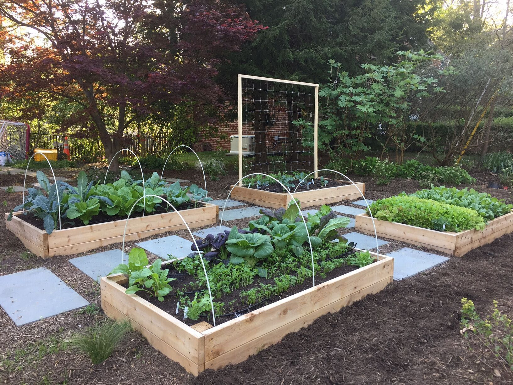 WHY YOU SHOULD PLANT A FRONT YARD VEGGIE GARDEN | Home ...