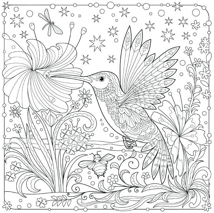 Hummingbird Coloring Pages Hummingbird Coloring Pages Best Coloring Images On Coloring Books Color Bird Coloring Pages Animal Coloring Pages Hummingbird Colors