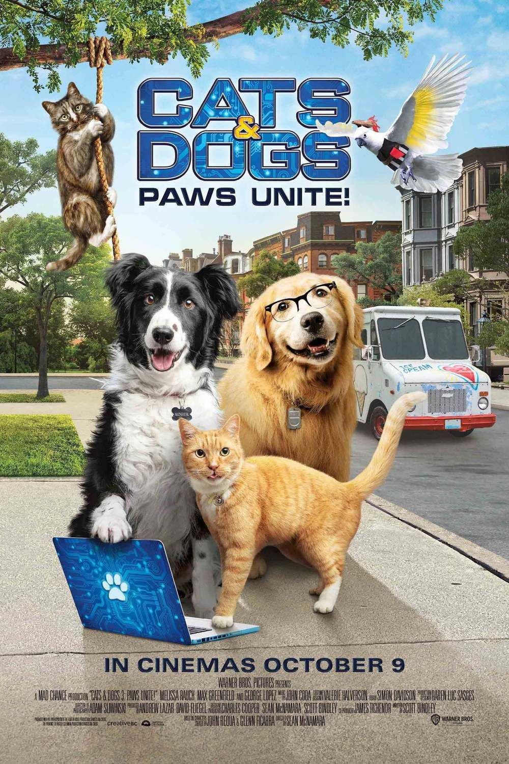 Cats Dogs 3 Paws Unite Dog Cat Dogs Dog Paws