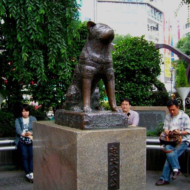 Hachiko at Shibuya Station 2012