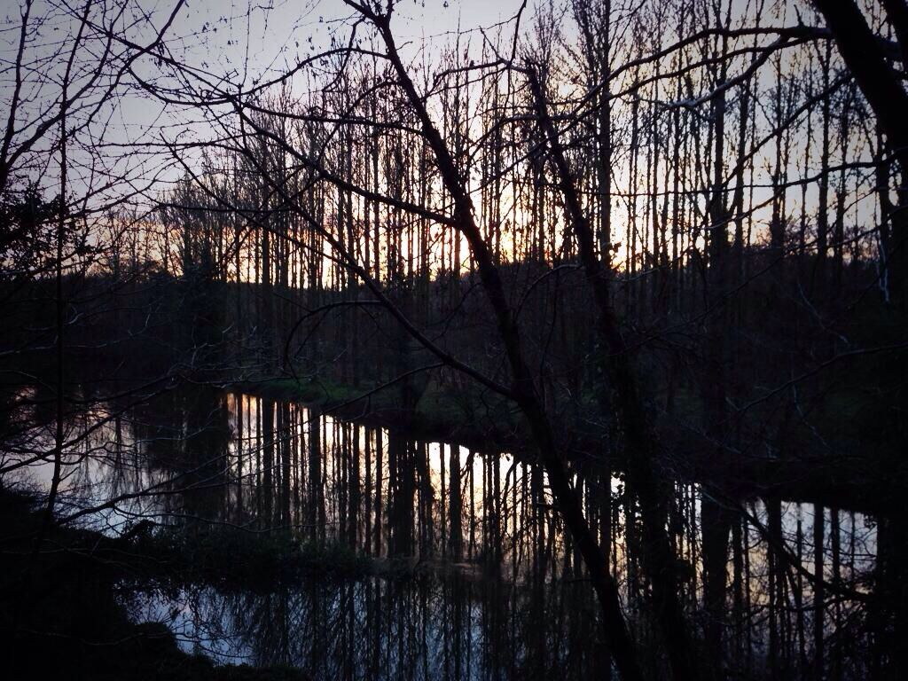 Reflection on the Lagan at sunset