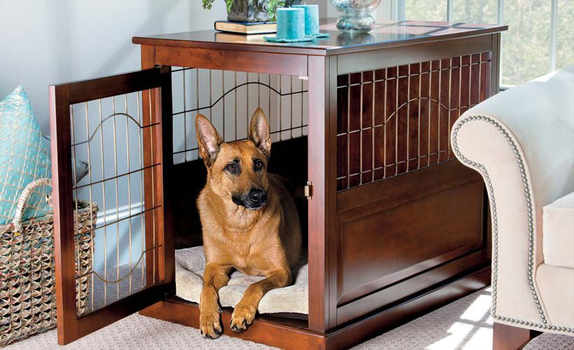 Indoor Dog Houses For Small Dogs Diy Dog Stuff Indoor Dog House