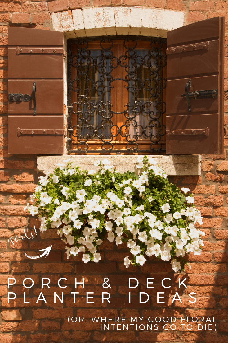 Porch and Deck Planter Ideas (Or, Where My Good Floral Intentions Go To Die is part of Deck planters, Planters, Decks and porches, Deck hydrangea, Deck design, Bucket planters - This is the stop for porch and deck planter ideas! I have some wonderful ideas and tips for your porch hanging baskets, planters, and window boxes!