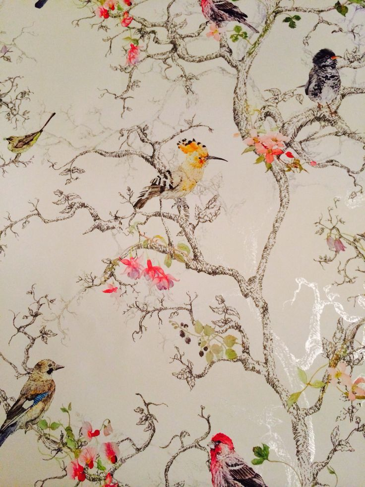 old fashioned wallpaper with birds - Google Search | House Ideas | Bathroom wallpaper, Bird ...