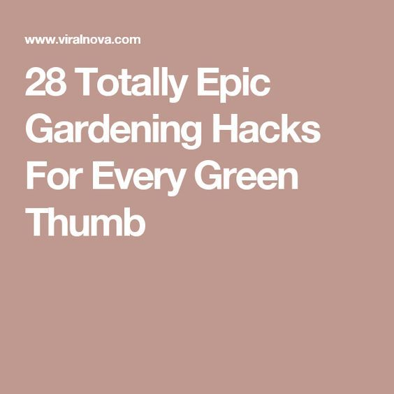 28 Totally Epic Gardening Hacks For Every Green Thumb