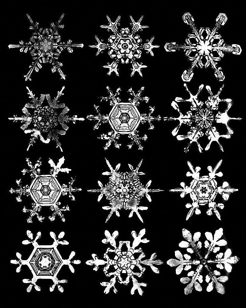 Snow crystal clipart - ClipartFest