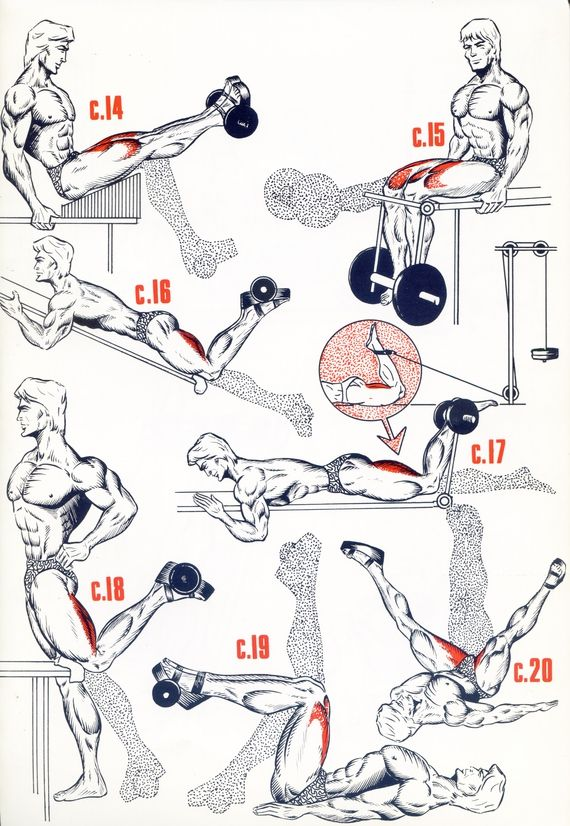 Cuisses3 | Musculation jambes, Exercice musculation