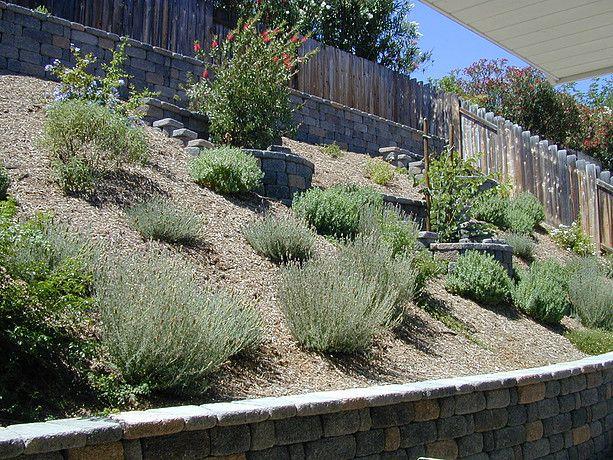 Award Winning Natural Landscape Design San Diego Landscape