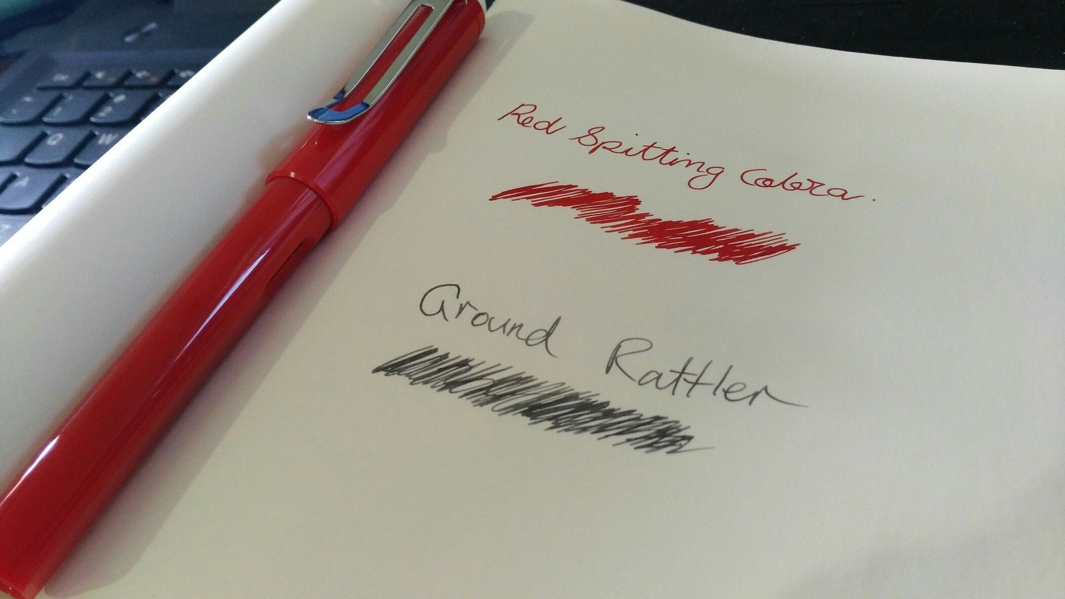 Bookbinders Genuine Snake Ink for Fountain pens