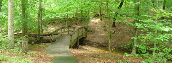 brookhaven nature trails raleigh nc nature trail nature outdoor pinterest