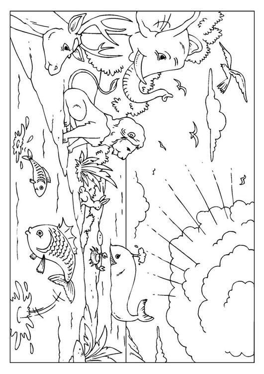 creation  biblia dibujos actividades de la biblia dibujos