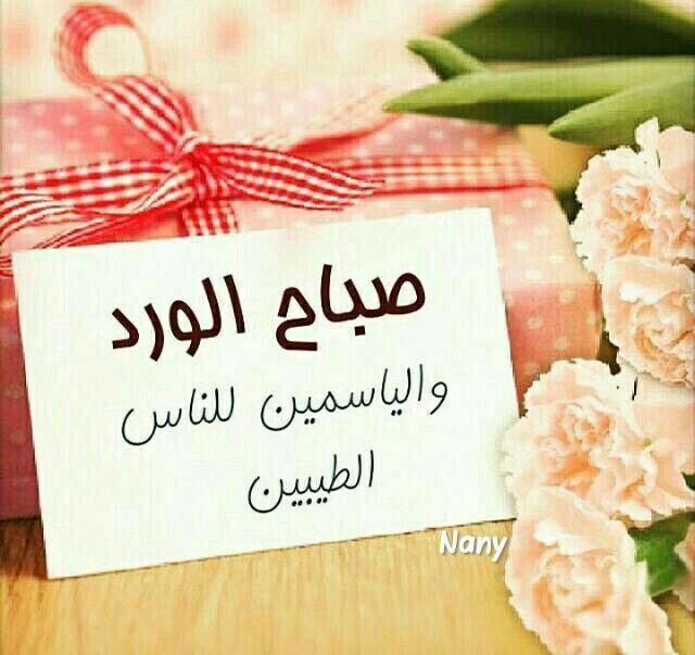 صباح الورد والياسمين للناس الطيبين صباح الورد Good Night Messages Morning Greetings Quotes Night Messages