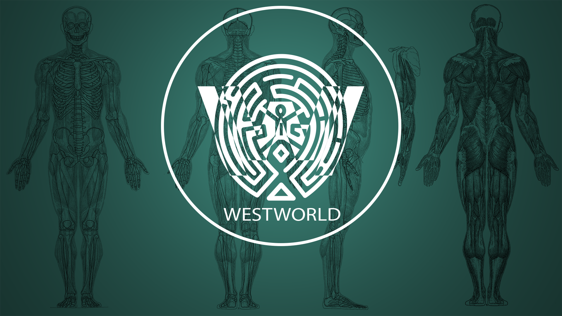 Any Westworld Fans Here 1920x1080 Westworld Hd Wallpaper Wallpaper