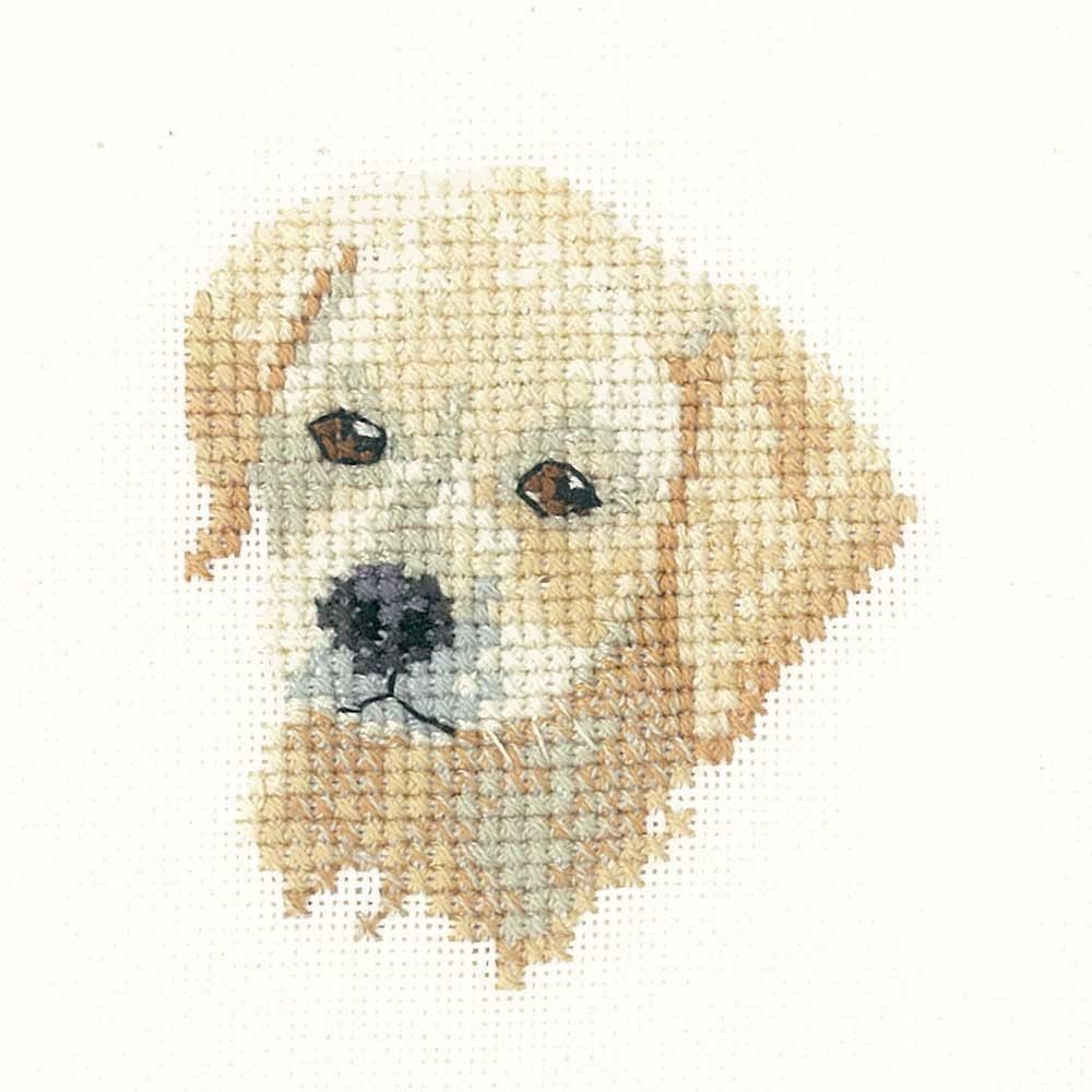 Golden Labrador Puppy | Heritage Crafts Counted Cross Stitch Kit