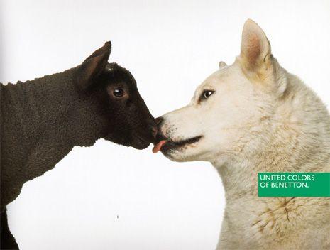 Mycoolness benetton ads collection fot grafos for Benetton y sus campanas publicitarias