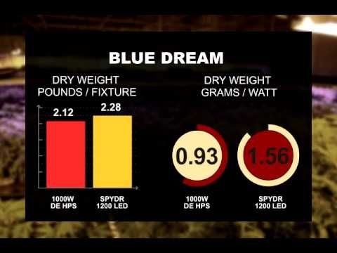 Dry Weight Comparison Results Led Vs 1000w Double Ended Hps Led Grow Lights Weight Led