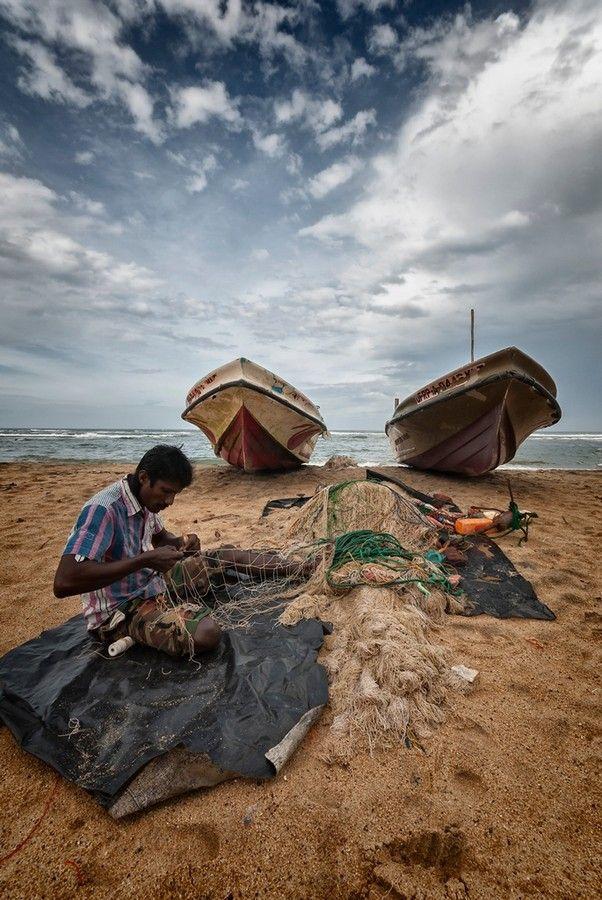 Fiskeindustrien er en af de vigtigste på Sri Lanka. Derfor er der rig mulighed for, at nyde en friskfanget fisk.