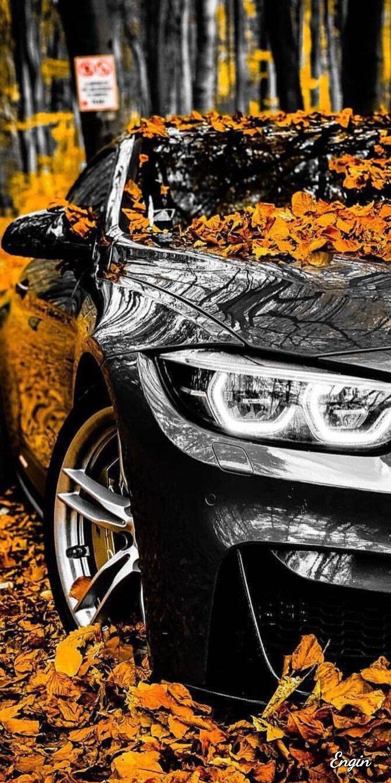 Cars Mopungshel Bmw M4 Bmw Bmw Wallpapers