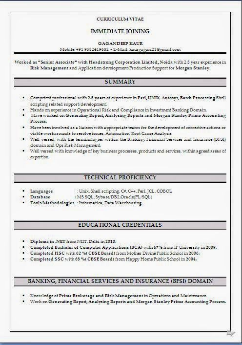 Bad Resume Examples Sample Template Example Ofexcellent Curriculum