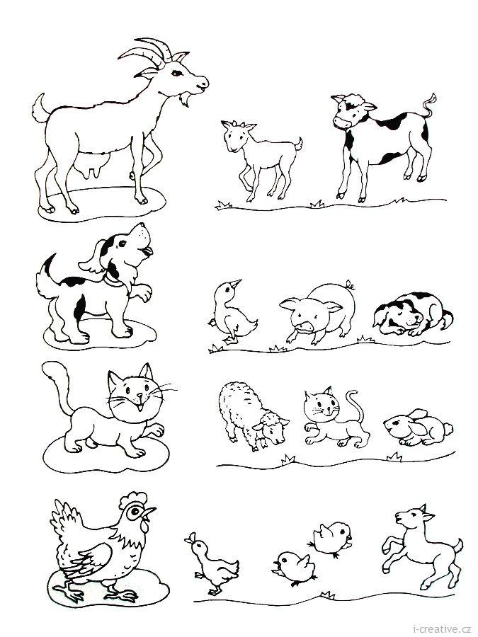 Pin by Monika K. on MLÁĎATA / YOUNG ANIMALS   Preschool printables,  Preschool activities, Animal activities