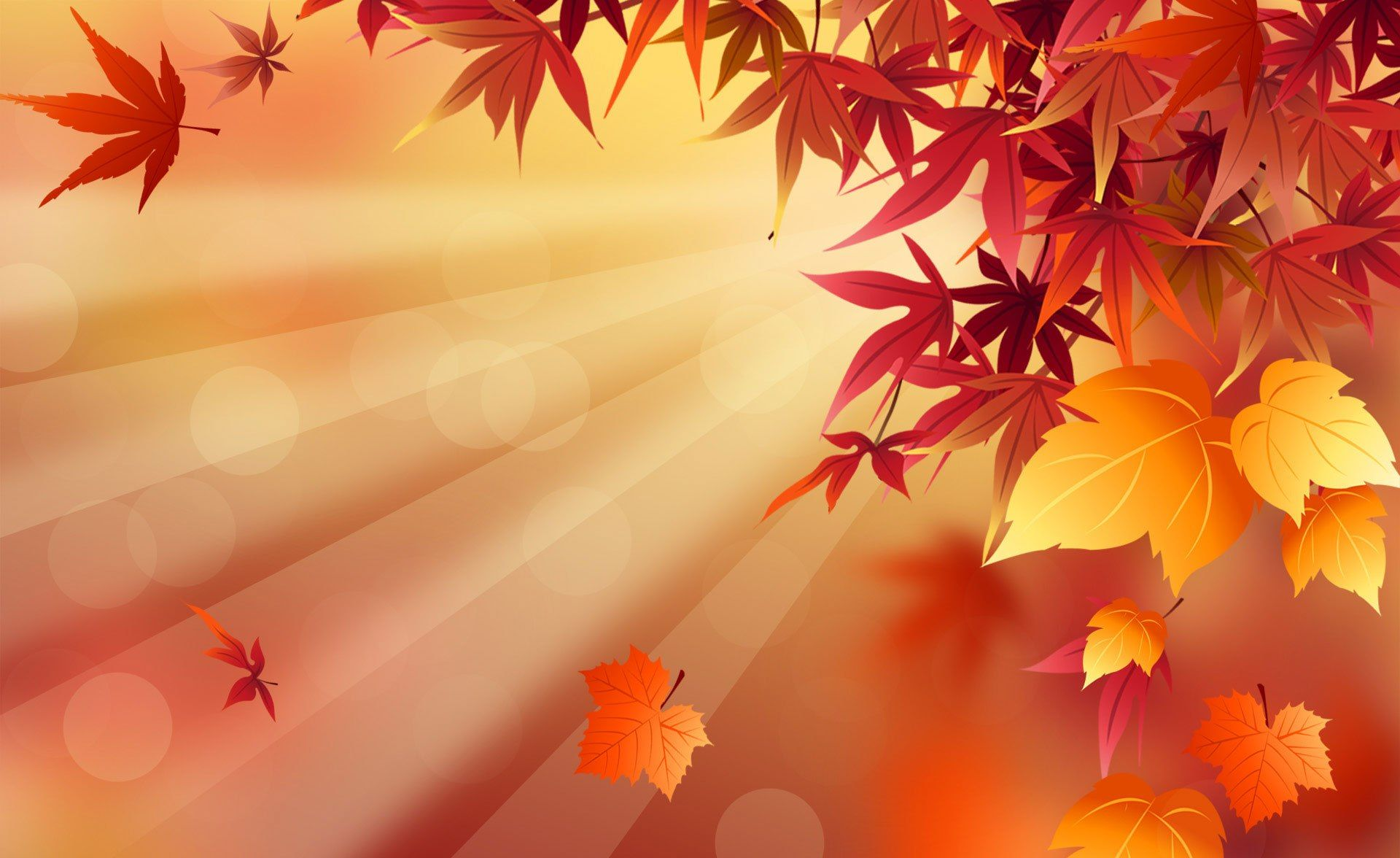 "2011 autumn hd wallpapers to download creativitywindowa""¢"