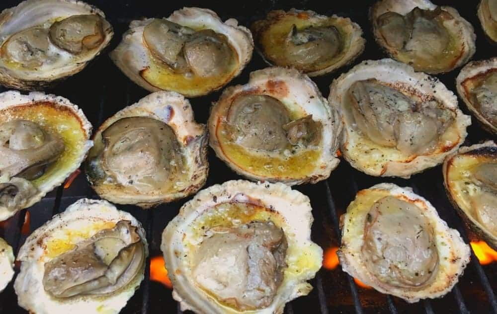 Easy grilled oysters on the half shell recipe in 2020