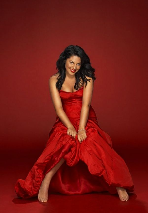 sara ramirez wedding