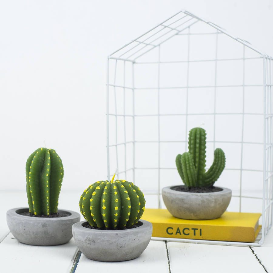 Cactus Buiten Cactus Candle A Fun And Quirky Gift Of Three Cactus Design