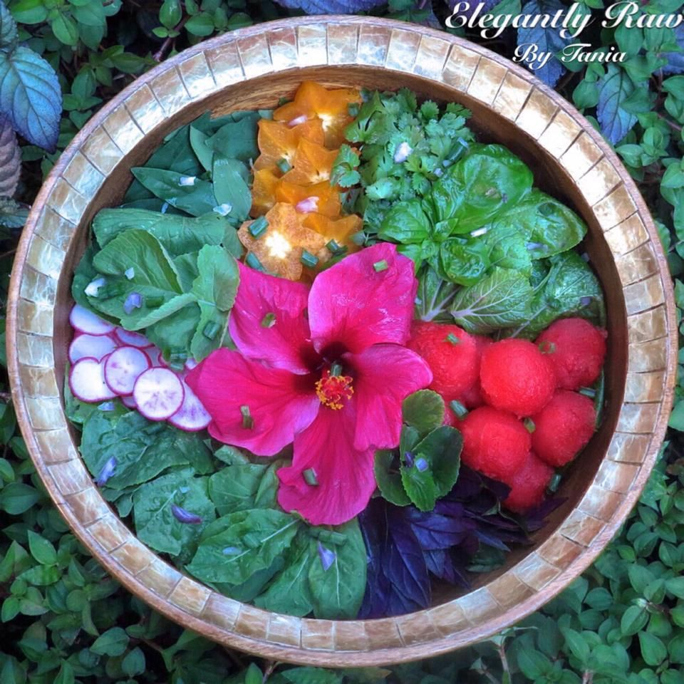 ✨My Perfect Christmas Eve Salad✨is composed of Chopped Romaine Lettuce, Bright Pink Radish, Radish Leaf, Katuk Leaf, Star Fruit/Carambola, Fresh Cilantro, Fresh Basil, Bok Choy, Watermelon, Gotu Kola, Okinawan Spinach, Arugula, Hibiscus Edible Flower Petal and Chopped Red Onion and Green Onion sprinkled on top with Fresh Squeezed Lime Juice. I hope all of you are enjoying this special night surrounded by lots of peace and love. On this eve of the miracle, Merry Christmas to all!