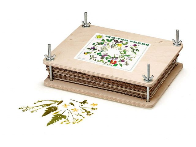 Flower Press Kit Perfect For Leaf Petal And Full Flower Pressing