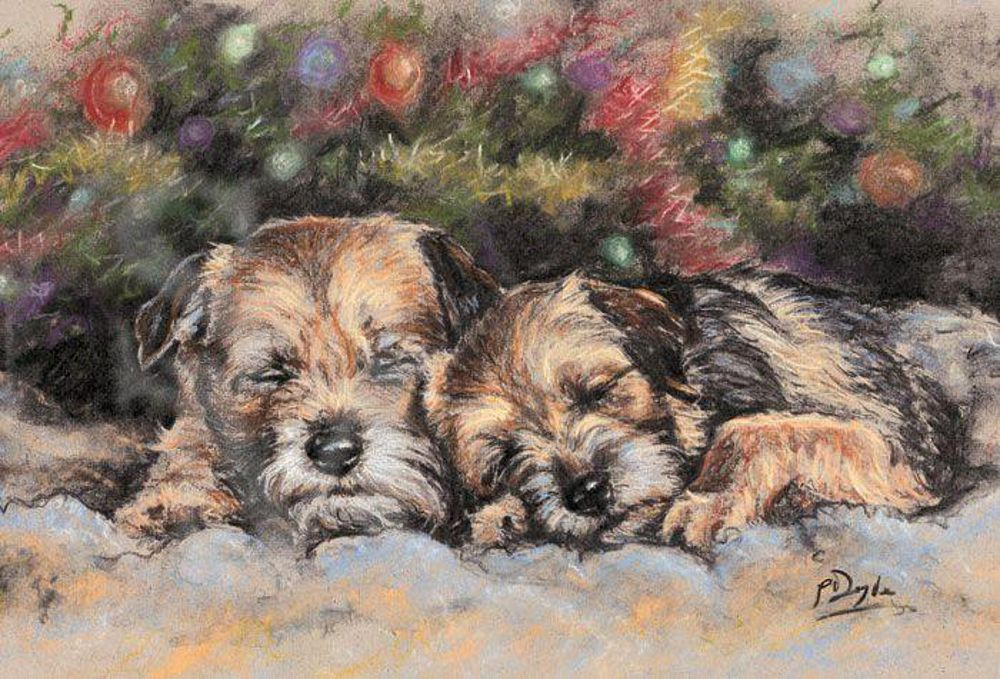 Border Terrier Pack Of 10 Christmas Cards Night Before Christmas