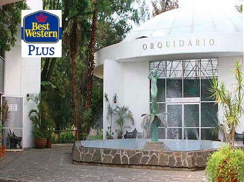 Ya visitaste el Orquidario de Morelia, ¿Qué esperas? Te encantará y deléitate con el buen servicio del Hotel Best Western Morelia. http://www.bwplusmorelia.com.mx/Home