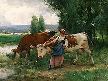 Bos primigenius taurus - Wikipedia, la enciclopedia libre