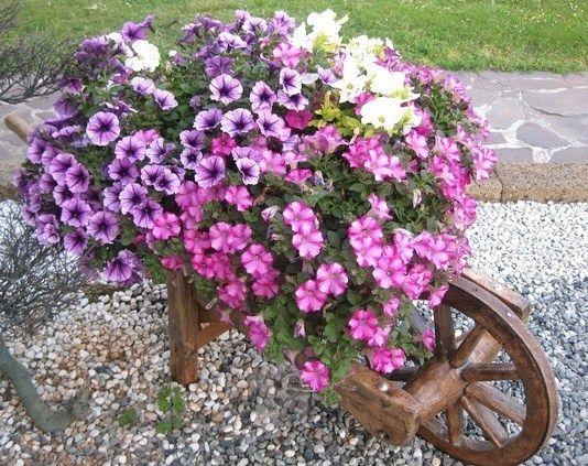 Les brouettes fleuries du jardin fleurs mariage jardins brouette et decoration jardin - Brouette de jardin en bois ...