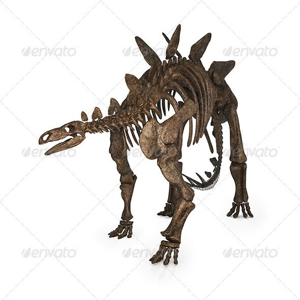 Stegosaurus 3d Render Isolated  #GraphicRiver