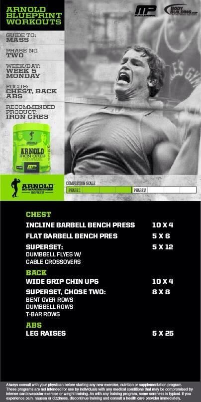 Arnold blueprint chest back abs upper body workouts pinterest arnold blueprint chest back abs malvernweather Image collections
