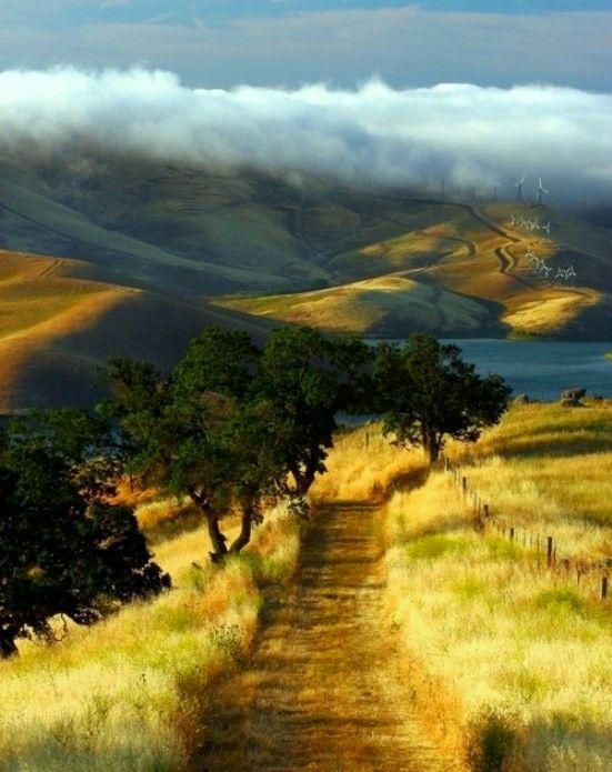 Crumpler,  Marc - Walking Along Hilltop- Los Vaqueros, Vista Grande Trail, CA (500px)