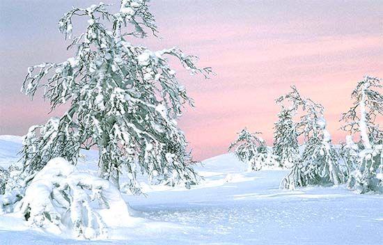 Pallaksen hiihtokeskus on yksi hiihtolomien suosikkeja. Pallastunturin lumoviin talvimaisemiin moni lomalainen on rakastunut.