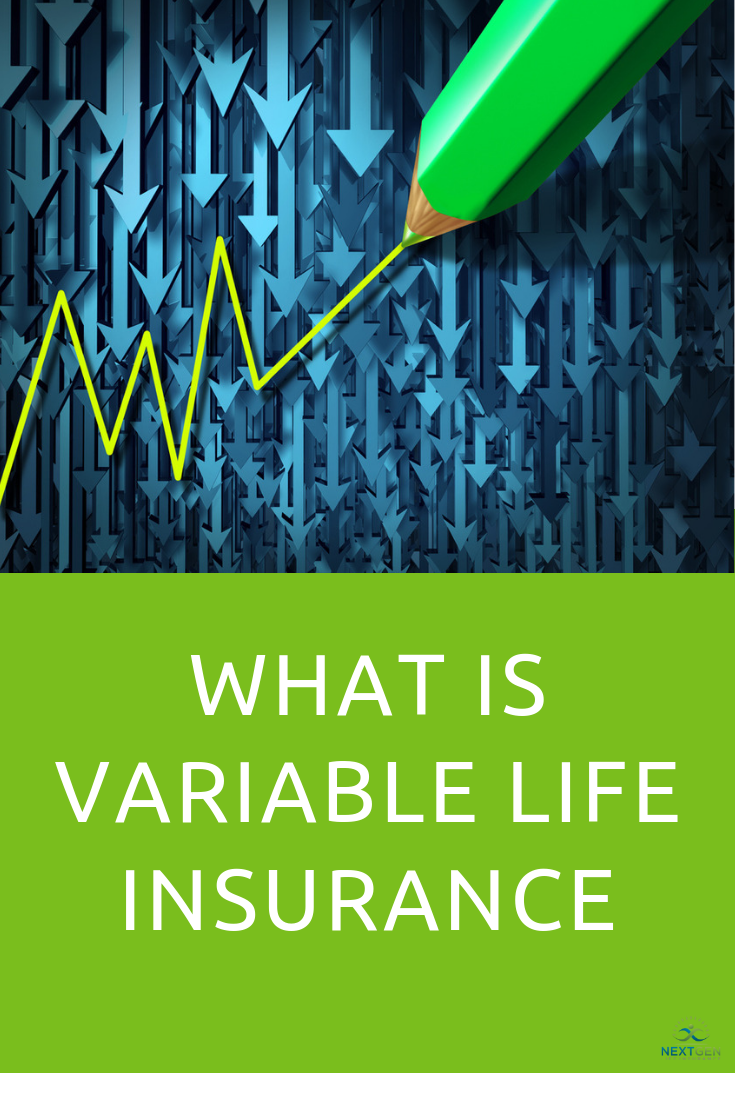 What Is Variable Life Insurance Variable Life Insurance Life