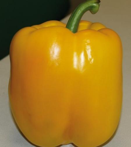 ces-5-aliments-accelerent-la-pousse-des-cheveux-poivron-jaune