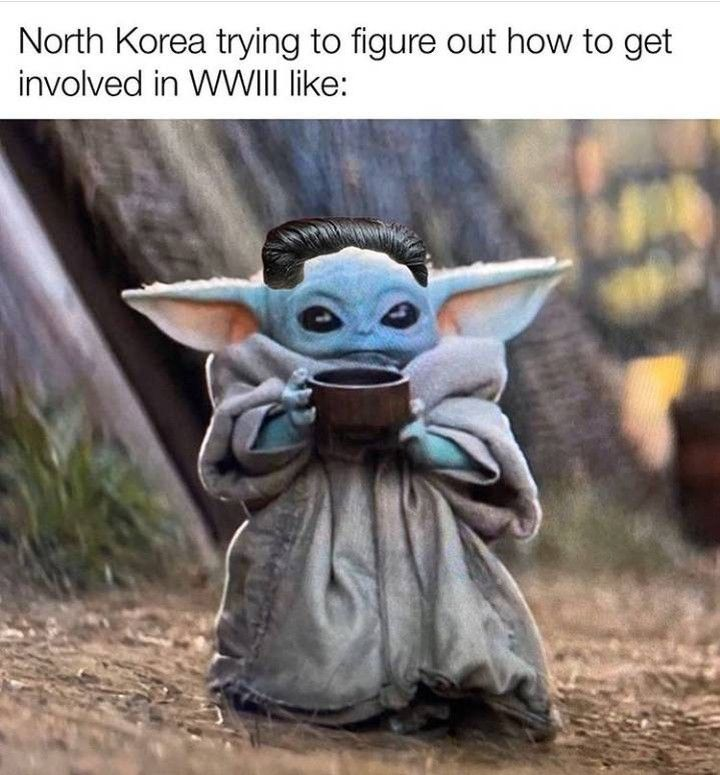 Baby Yoda Memes On Instagram Which Country Are You From Babyyoda Babyyodamemes Ww3 Northkorea Old Memes History Memes Funny Memes