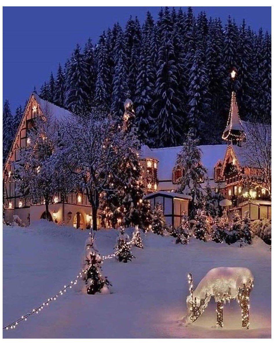 "Santa Claus on Instagram: ""Gorgeous ☃️????❄️???????? . . . . . #september #christmastime #christmasmood #christmas Gorgeous ☃️????❄️???????? . . . . . #september #christmastime #christmasmood #christmasvibes #christmaslove #christmaslights #lights #christmastree…"