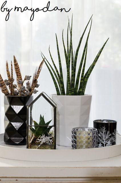 Wohnzimmerdeko Im Winter #deko #Dekoration #Wohnzimmer #livingroom  #Glashaus #sukkulenten #