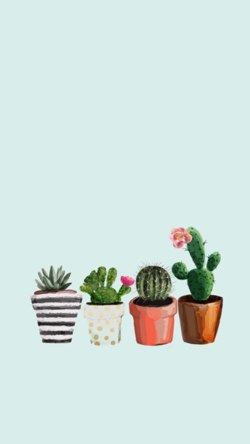 Imagen de background cactus and iphone