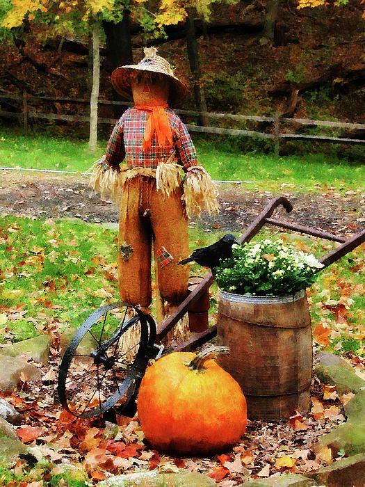 Scarecrow And Pumpkin Photograph By Susan Savad
