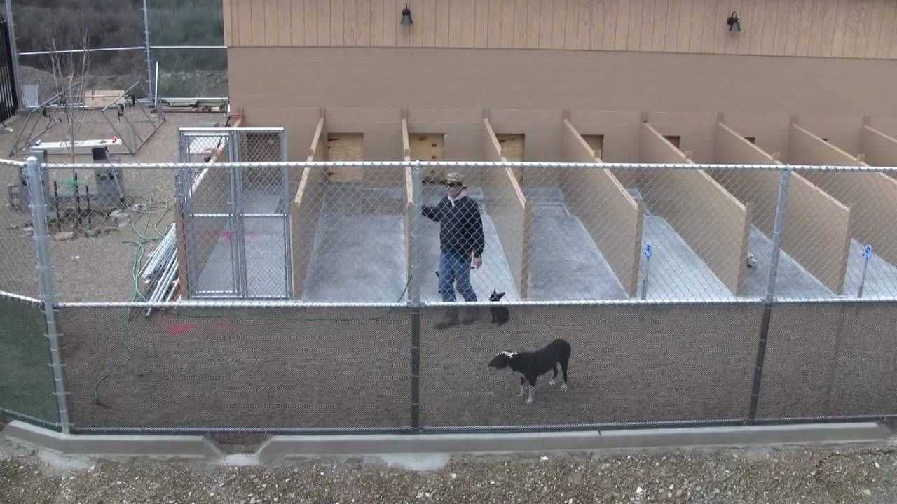 Building A Commercial Dog Boarding Kennel Part Two Dog Boarding Kennels Dog Kennel Designs Building A Dog Kennel