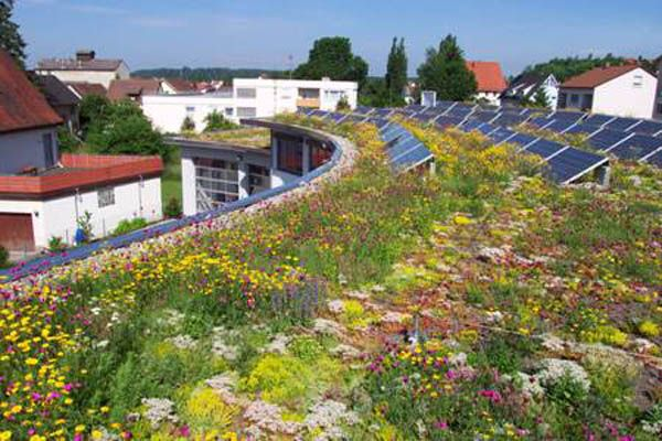 Green Roof With Solar Panels Exteriors And Interiors