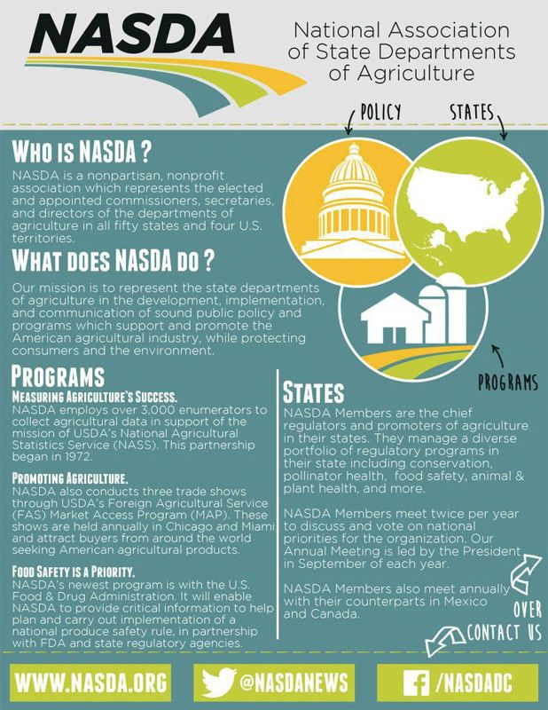 Government One Pager Nasda Pagers Marketing Plan Infographic Digital Marketing Plan