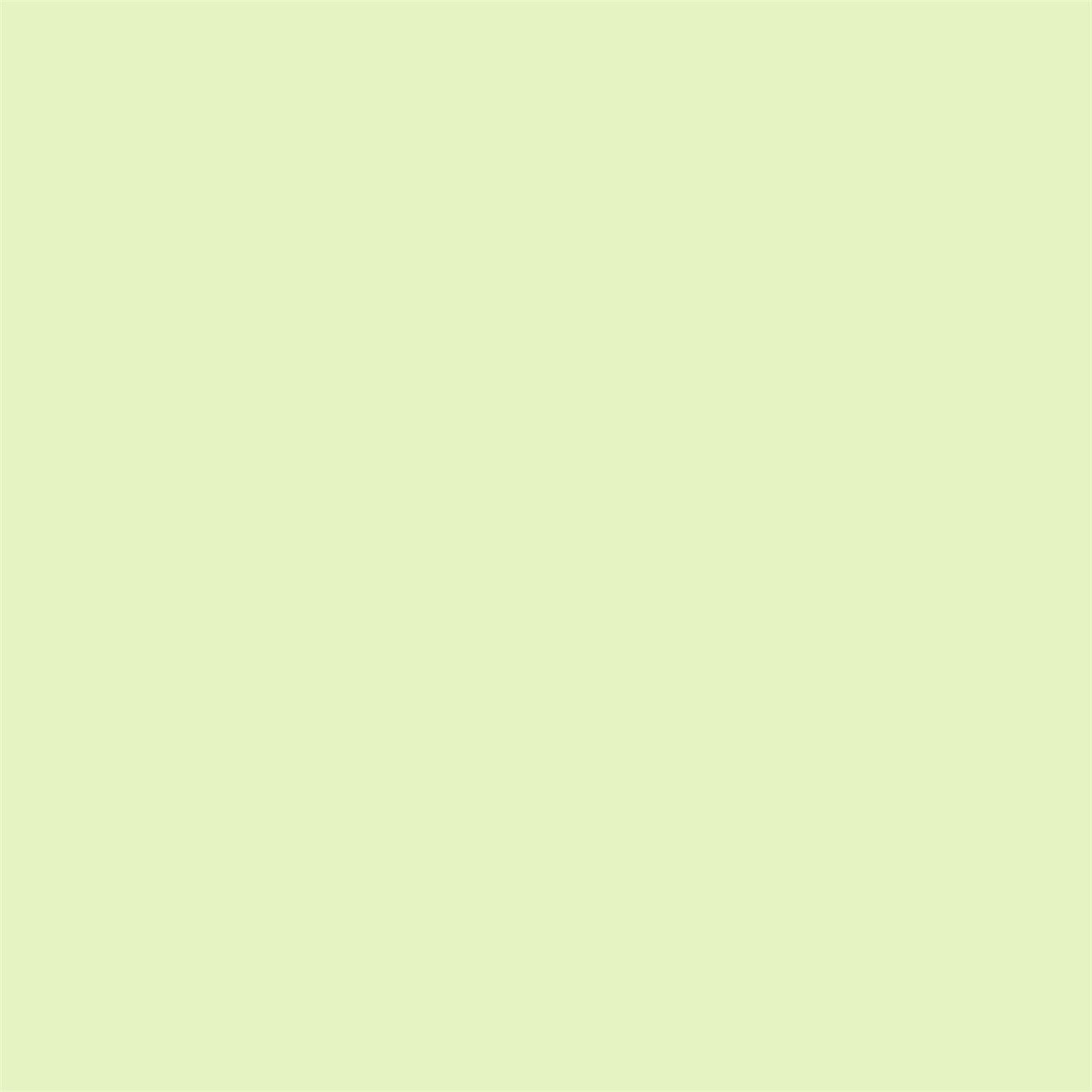 Elegant Pastel Green Paint Colors