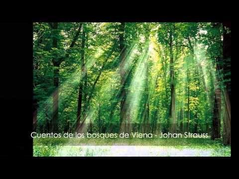 JOHANN STRAUSS II.- Cuentos de los Bosques de Viena Op. 325 - YouTube